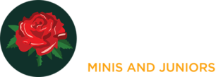 Barnes Rugby